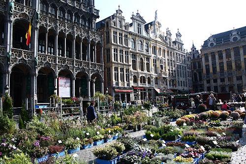 Жилье в Брюсселе
