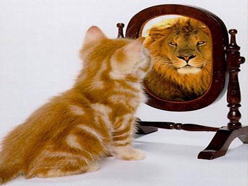 От чего зависит самооценка: результаты исследований ученых