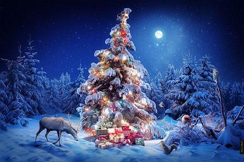 А где ты был в новогоднюю ночь