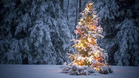 Сколько лет Деду Морозу