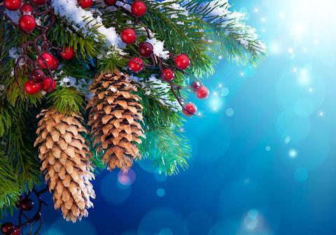 А вот и подарки от Деда Мороза